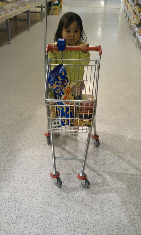 Miniature Trolley for kids in Coles Supermarket